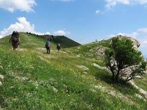 El Backpacking en Crimea el verano Fotografía de archivo