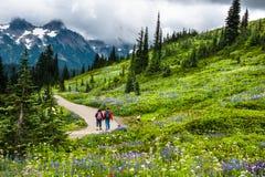 El Backpacking en las montañas fotografía de archivo libre de regalías