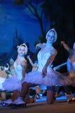 El ballet del estado de St Petersburg en el hielo - lago swan Fotos de archivo libres de regalías