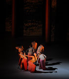 El ballet deseo-moderno de las mujeres: Trollius chinensis Imagen de archivo libre de regalías