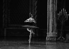 El ballet los dedos del pie en el artístico Imagen de archivo libre de regalías