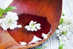 El balneario blanco delicado florece la flotación en el agua Foto de archivo