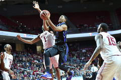2015 el baloncesto de los hombres del NCAA - Templo-Tulsa Imagen de archivo libre de regalías