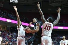 2015 el baloncesto de los hombres del NCAA - Templo-Tulsa Fotografía de archivo
