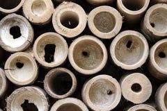 El bambú circunda al detalle fotografía de archivo