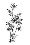 El bambú pintado a mano chino antiguo tradicional ilustración del vector