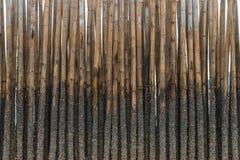 El bambú protege la arena contra onda del mar Imagen de archivo