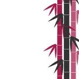 El bambú proviene el fondo ilustración del vector