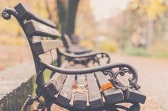 El banco de parque en el otoño colorea la luz Imagen de archivo libre de regalías
