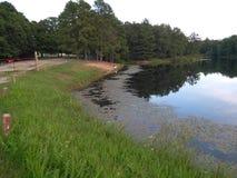 El banco del lago Imágenes de archivo libres de regalías