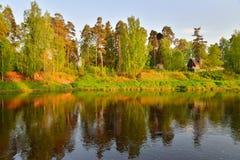 El banco del río Oredezh con día soleado de los árboles Fotografía de archivo libre de regalías