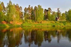 El banco del río Oredezh con día soleado de los árboles Fotos de archivo libres de regalías