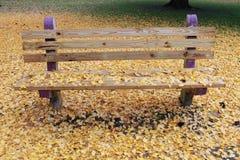 El banco púrpura hace estallar de fondo amarillo frondoso fotografía de archivo libre de regalías