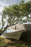 La langosta comercial del barco de pesca del Panga atrapa la isla de maíz grande   Imagen de archivo