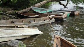 El barco está en el agua cerca de la orilla, atada a un árbol y gira bajo los efectos del viento almacen de metraje de vídeo