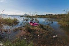 El barco viejo rosado corre encallado Fotografía de archivo
