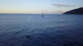 El barco y los delfínes de vela en Makua varan en la isla de Oahu en el abejón de Hawaii derecho abajo sobre el filón almacen de metraje de vídeo