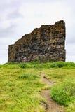 El barranco del asbyrgi en parque nacional del vatnajokull fotografía de archivo libre de regalías