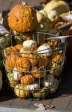 El bascket con las pequeñas calabazas Imagen de archivo libre de regalías