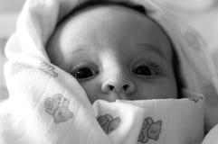 El bebé Foto de archivo