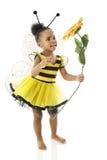 El bebé adorable manosea la abeja Imagenes de archivo