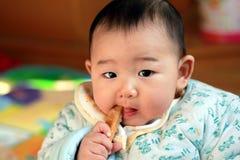El bebé come el stickt del premolar Imagenes de archivo
