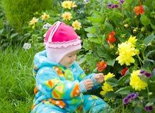 El bebé considera la flor. Foto de archivo libre de regalías