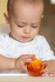 El bebé curioso examina un melocotón Imagen de archivo libre de regalías