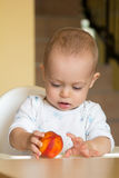 El bebé curioso examina un melocotón Fotos de archivo libres de regalías