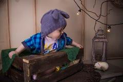 El bebé en el casquillo del ratón perdió un búho entre las ramas y las bombillas Fotos de archivo libres de regalías