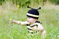 El bebé en traje de la abeja alcanza para una flor Imagen de archivo libre de regalías