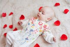 El bebé lindo miente en pétalos de la flor foto de archivo