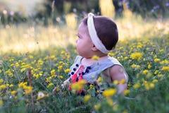 El bebé que se sienta en la hierba con el diente de león florece Fotografía de archivo