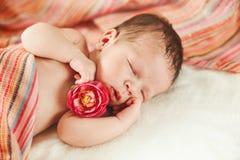El bebé recién nacido durmiente lindo con la flor roja en pequeño Tou Fotografía de archivo libre de regalías