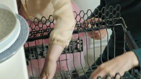 El bebé rubio lindo en una falda rosada, ayuda a la mamá en la cocina brillante, carga hacia fuera las placas, tazas del lavaplat almacen de video