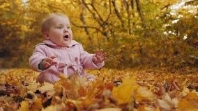 El bebé se sienta en las hojas de otoño almacen de metraje de vídeo