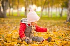 El bebé se sienta en leafes en parque del otoño Imagenes de archivo