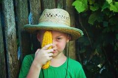 El bebé sostiene en sus manos un maíz hervido Imagenes de archivo