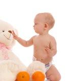 El bebé trae dos naranjas al oso preferido Imagen de archivo