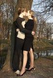 El besarse Imágenes de archivo libres de regalías