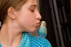 El besarse de la muchacha y del budgie Foto de archivo