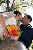 El besarse de los pares de la boda Fotografía de archivo libre de regalías