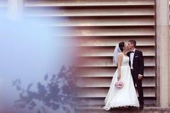 El besarse del novio y de la novia Fotos de archivo