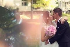 El besarse del novio y de la novia Foto de archivo