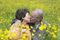 El besarse en el campo Foto de archivo