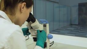 El biólogo de sexo femenino mira en un microscopio Imágenes de archivo libres de regalías
