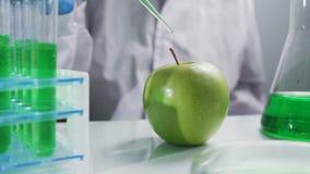 El biólogo inyecta en laboratorio de la manzana con crecimiento de prueba de la jeringuilla líquida almacen de video