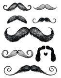 El bigote dibujado mano fijó 2 libre illustration