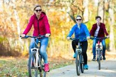El biking del grupo Foto de archivo