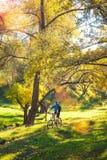 El Biking en el bosque imagen de archivo libre de regalías